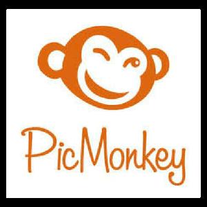 logo PicMoneky